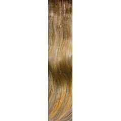 Extensions Volume supérieur Memory Hair